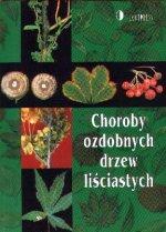 1051-choroby-ozdobnych-drzew-lisciastych